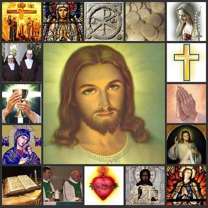 resized_Catholic_collage.jpg