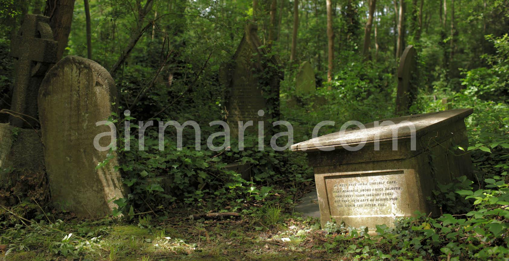 Highgate Cemetery 002