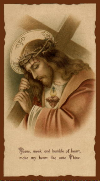 The Meek Sacred Heart of Jesus: our Model