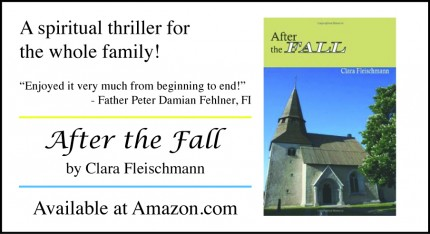 News – New Novel – After the Fall