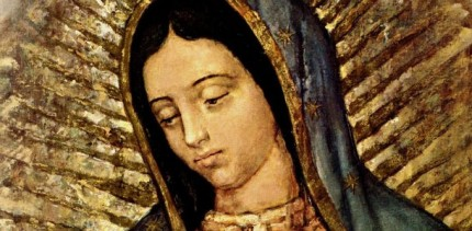 Our-lady-of-Guadalupe-430x211.jpg