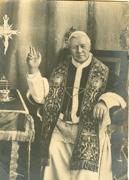 Pope St. Pius X writes about Our Lady