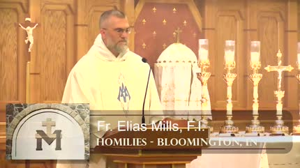 Jul 21 – Homily – Fr Elias: St. Lawrence of Brindisi, Sower of the Faith