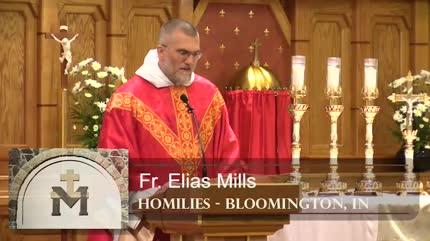 Nov 24 – Homily – Fr Elias: Thank You, Lord, Come Again