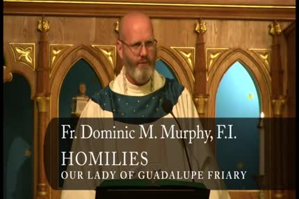 Aug 05 – Homily – Fr Dominic: Our Lady of the Snows