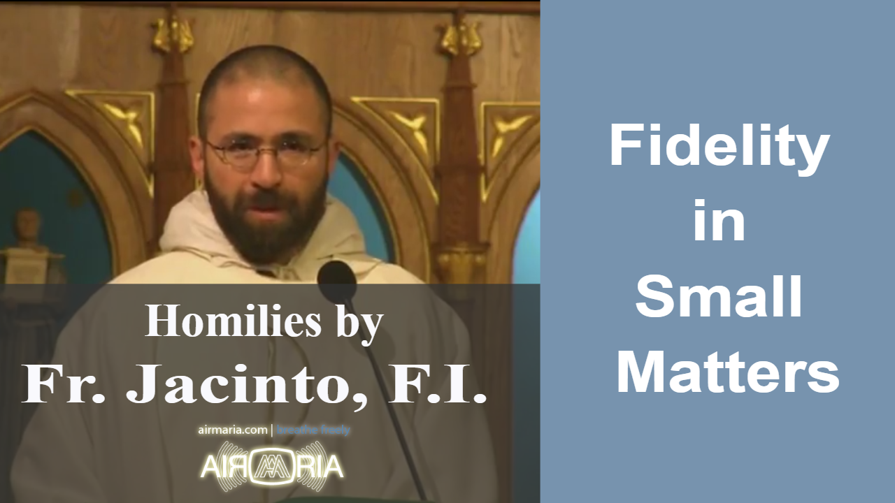 Nov 11 – Homily – Fr Jacinto: Fidelity in Small Matters