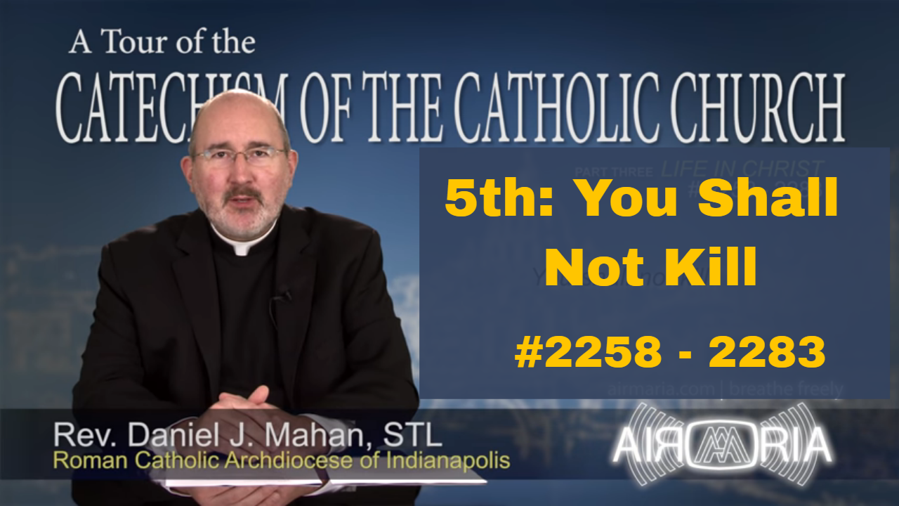 Video – 5th: You Shall Not Kill – Tour of the Catechism #84