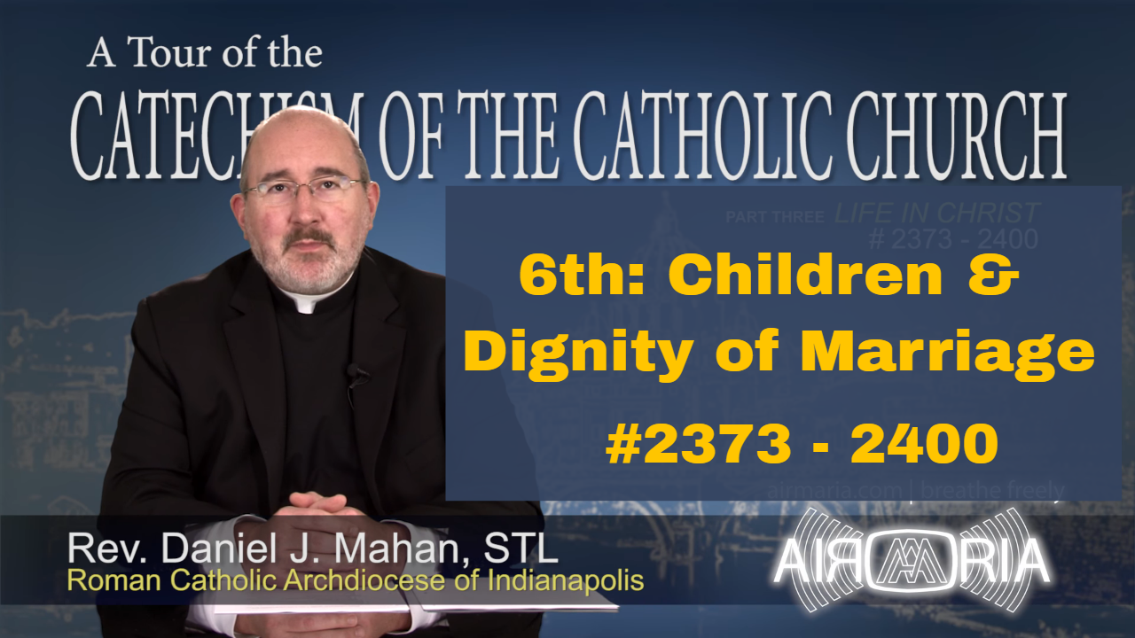 Video – 6th Commandment – Children & Dignity of Marriage – Tour of the Catechism #90