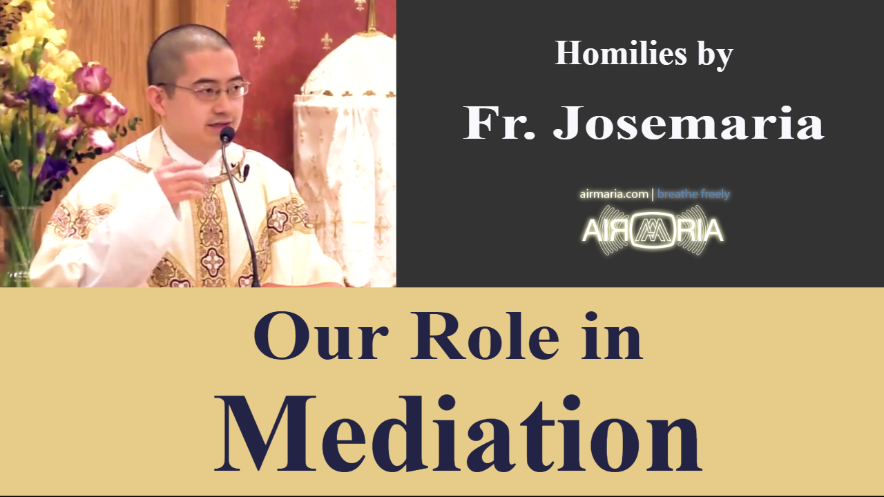 Our Role in Mediation – May 17 – Homily – Fr Josemaria