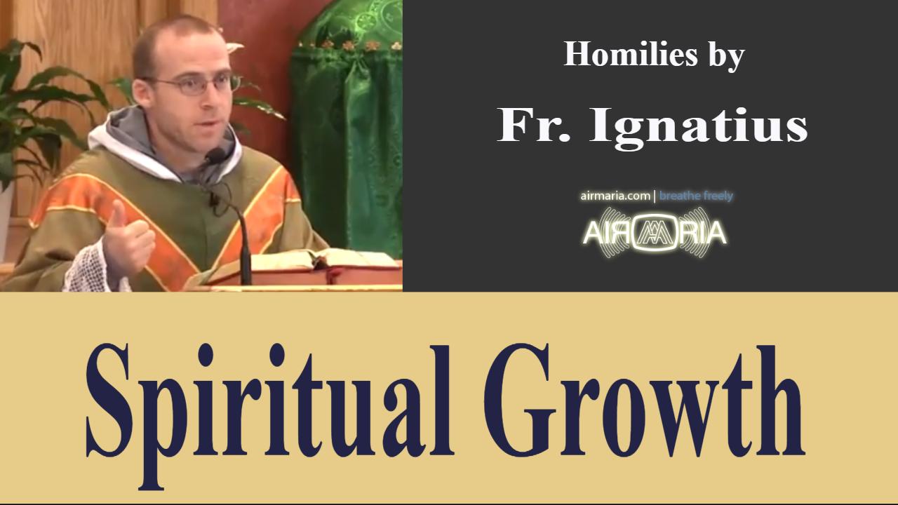 Spiritual Growth – Jun 17 – Homily – Fr Ignatius