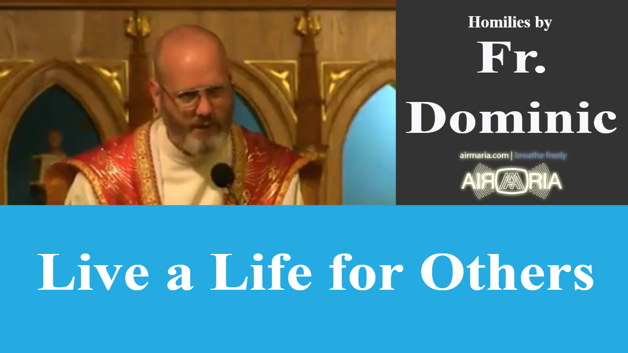 Live a Life for Others – Aug 10 – Homily – Fr Dominic