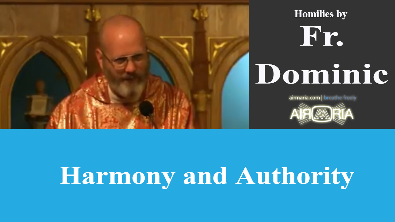 Harmony and Authority – Aug 09 – Homily – Fr Dominic