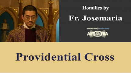 Providential Cross – Apr 05 – Homily – Fr Josemaria